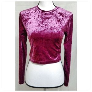 Pink Crush Velvet Crop Top By Divided